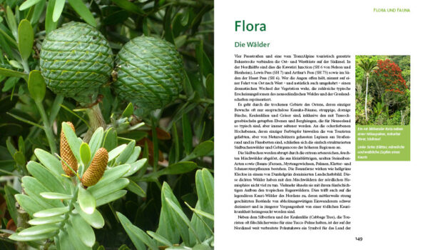 Naturwunder Neuseeland - Stein-Abel - Blick ins Buch