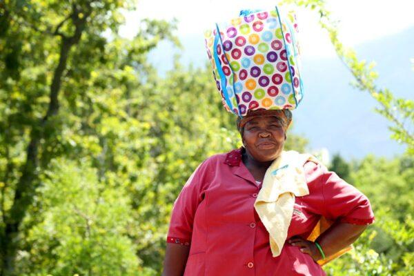 Südafrika,Kleine Karoo, Blyde River Canyon, ein Film von Silke Schranz und Christian Wüstenberg