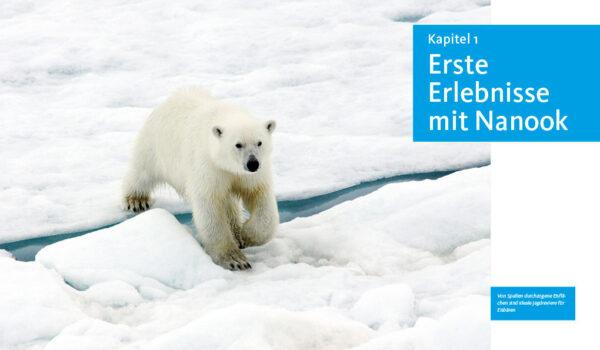 Eisbären, ein Buch von Mechthild und Wolfgang Opel